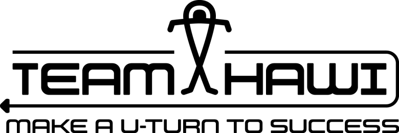Logo-Team-Hawi-2016